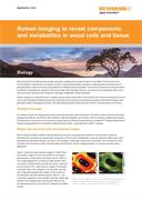 Application note:  Raman imaging to reveal components and metabolites in wood cells and tissue