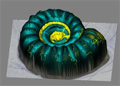 3d imaging of ammonite